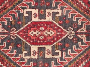 Scarab in a Qashqai rug